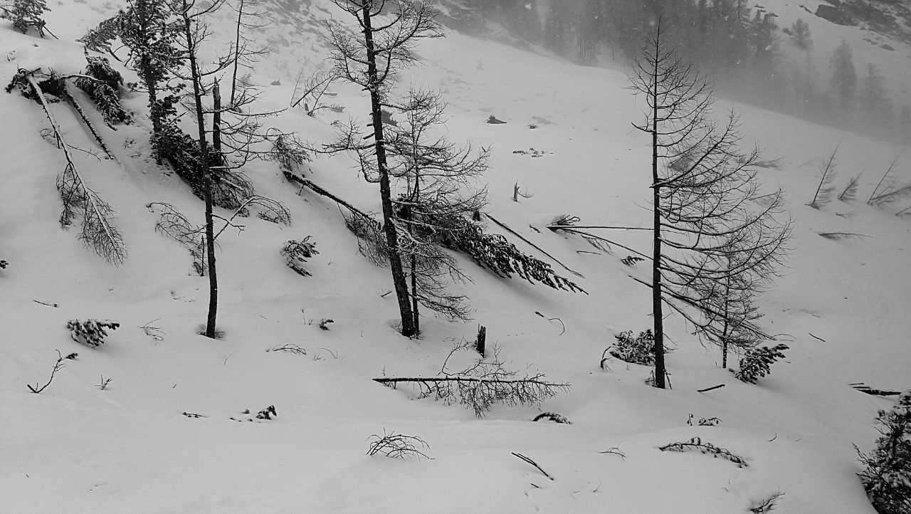 70 Abfahrt durchs Val Sarsura 1.700 Hm