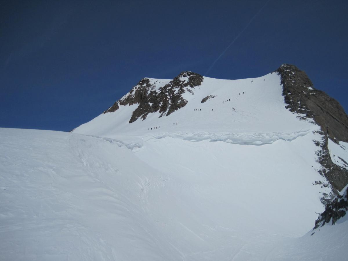 29 Gipfelflanke Weißkugel