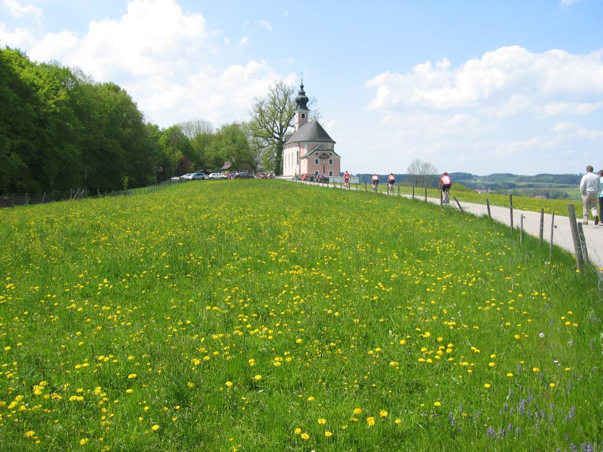 11_Rennradler am Muehlberg